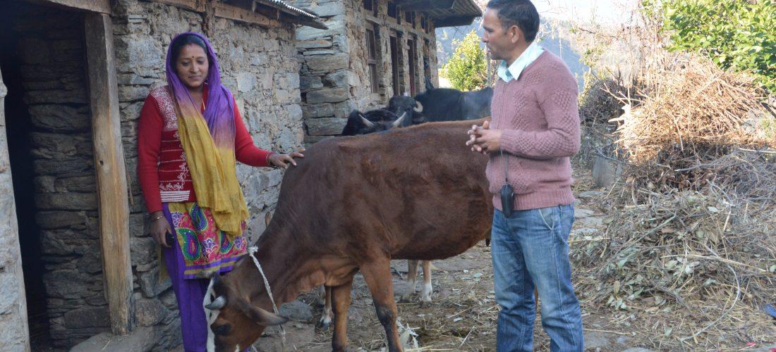 श्रीजन पशुपालनः बढ़ गई पशुपालन से आय