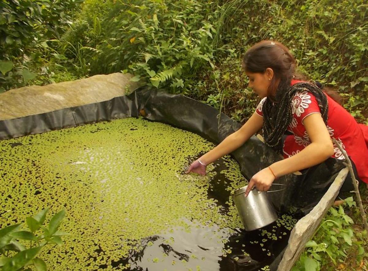 Sarita Devi Tyudi